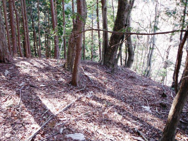 矢草城(阿南町) (13)