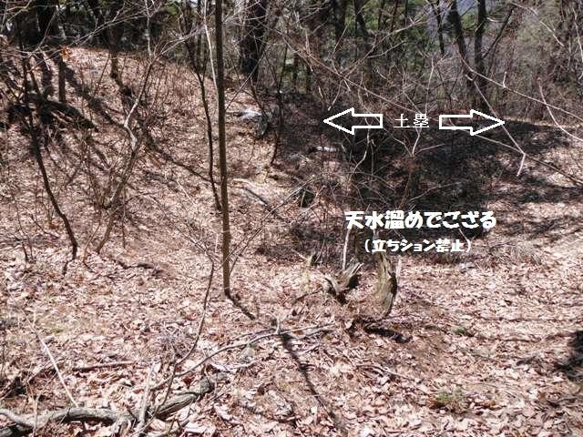 旭山城201404 (144)
