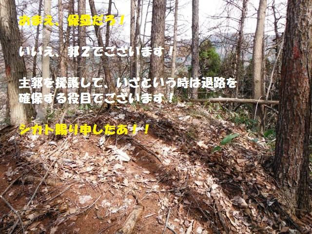 城山城(須坂市仙仁) (30)