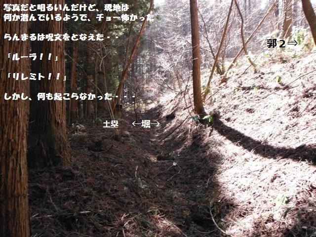 福井城(上水内郡高山村) (145)