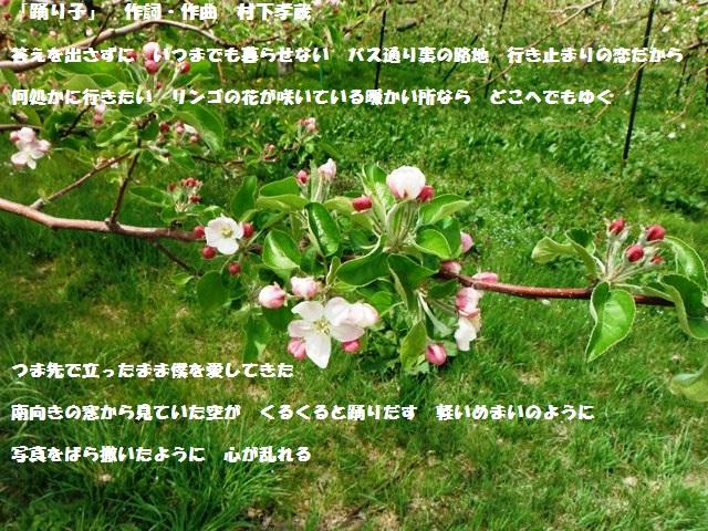 鴨ヶ岳城・鎌ヶ岳城(中野市) (219)