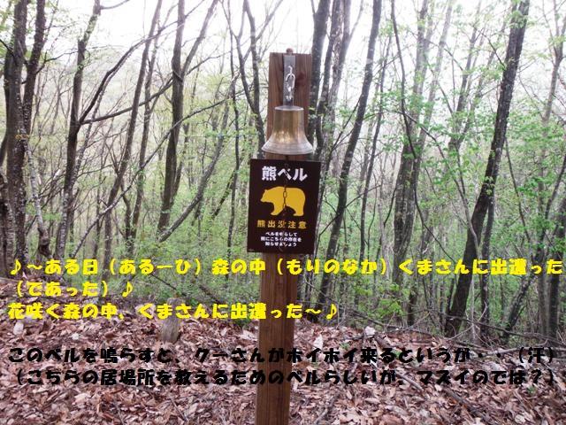 滝ノ入城(小布施町) (48)