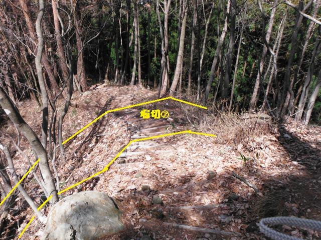 城山城(上水内郡高山村) (20)