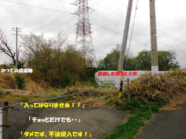 立ヶ花城(中野市) (27)