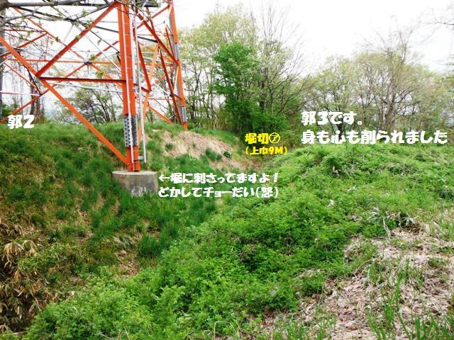 立ヶ花城(中野市) (3)