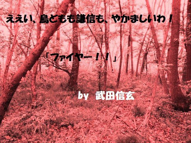 立ヶ花城(中野市) (16)