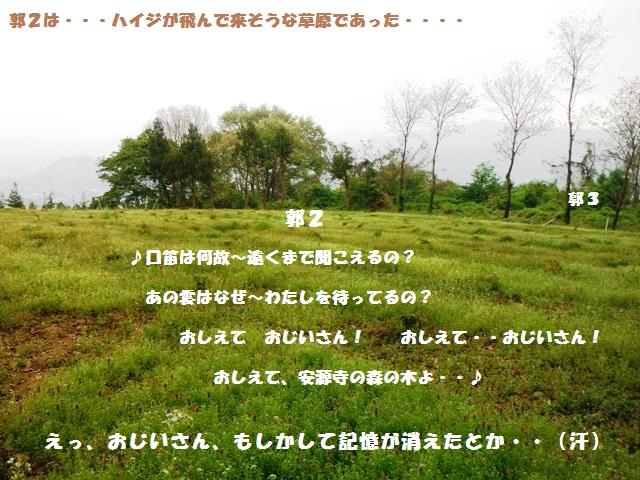 安源寺城(中野市) (12)