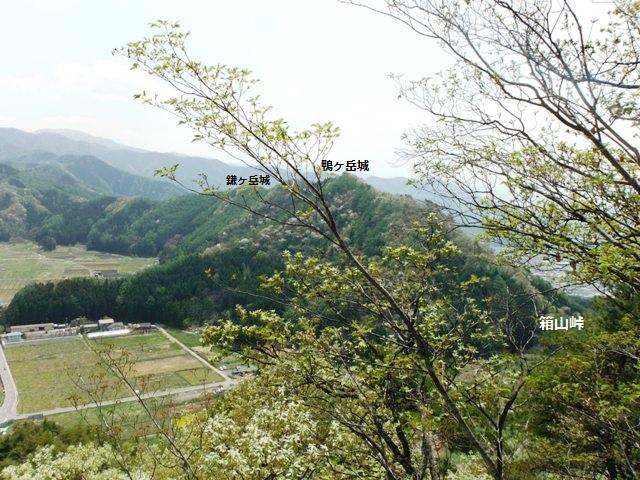 箱山城(中野市・山ノ内町) (69)