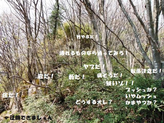 枡形城(高山村) (34)