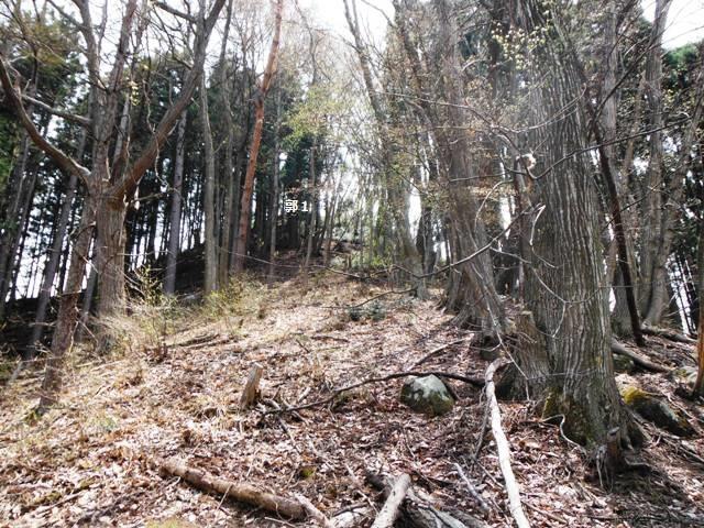 枡形城(高山村) (69)