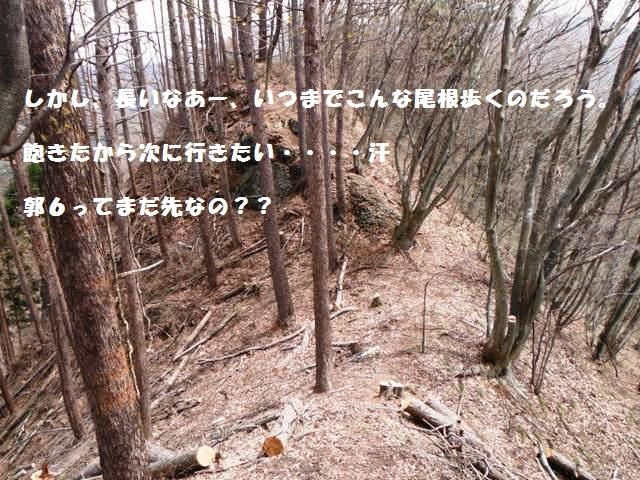 雨引城(須坂市) (82)