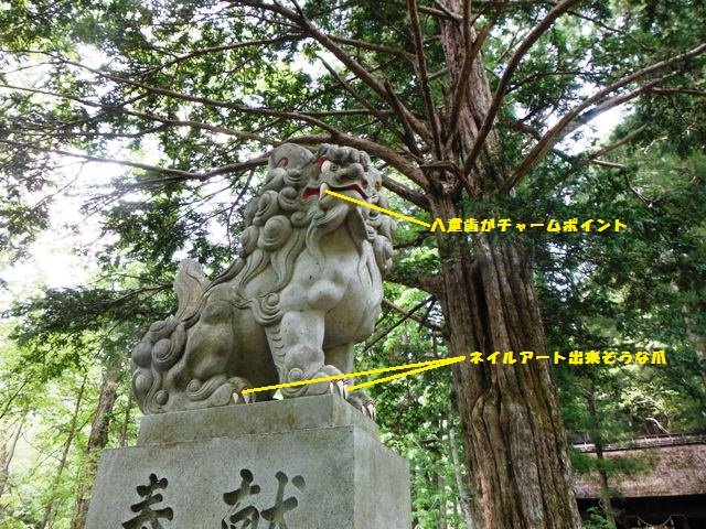 戸隠奥社201405 (10)