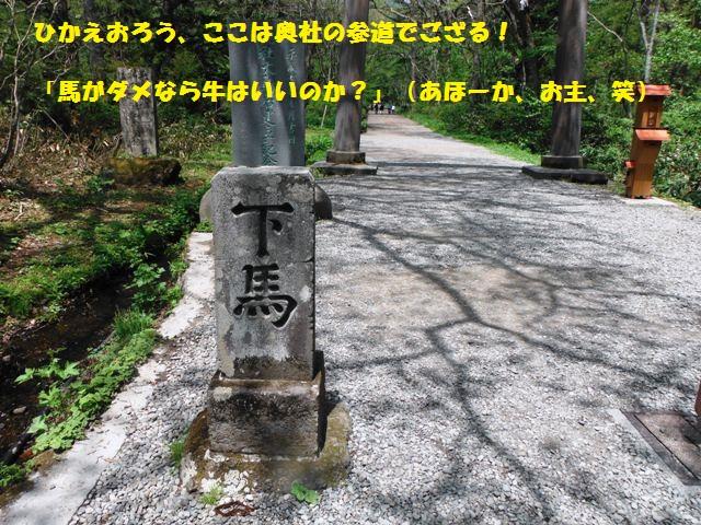 戸隠奥社201405 (3)