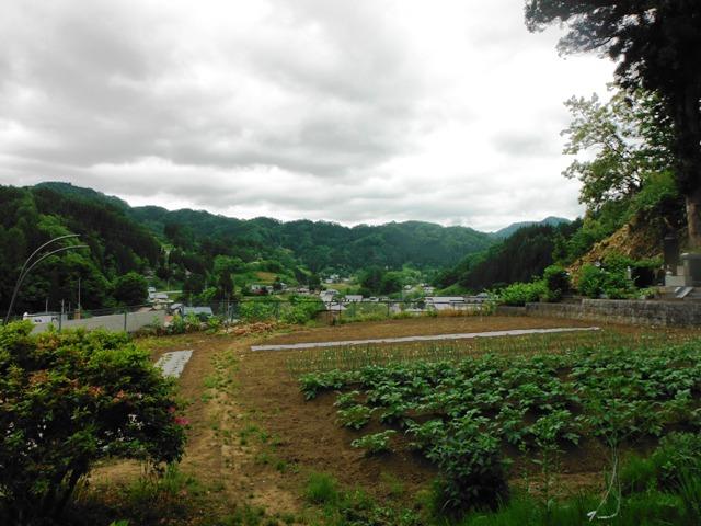 紅葉伝説201406 (122)