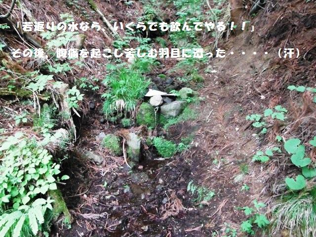 紅葉伝説201406 (85)