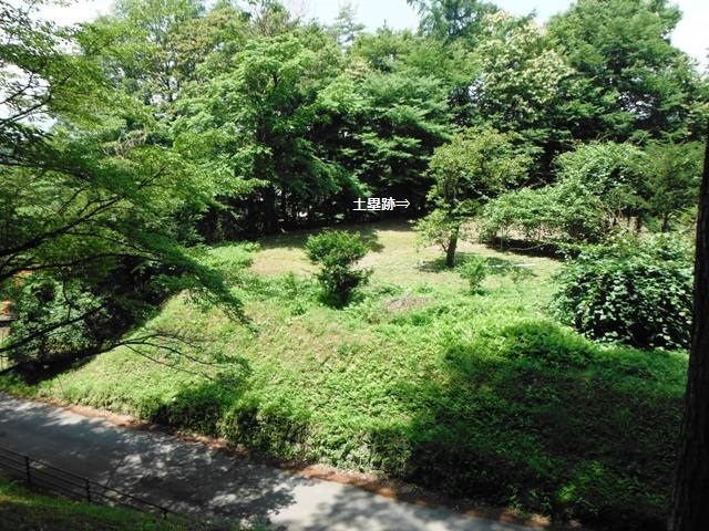 谷戸城(北杜市) (82)