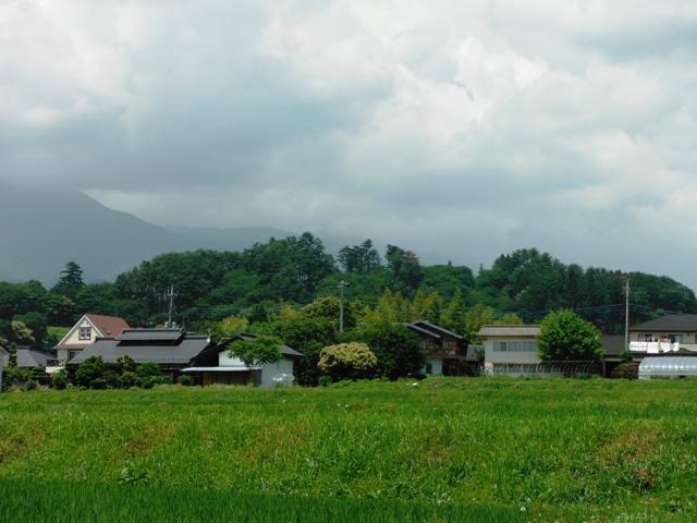 谷戸城遠景