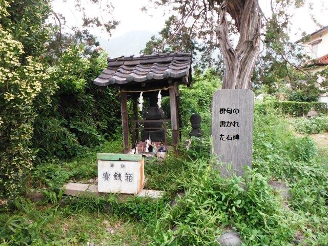 板垣信方の墓 (49)