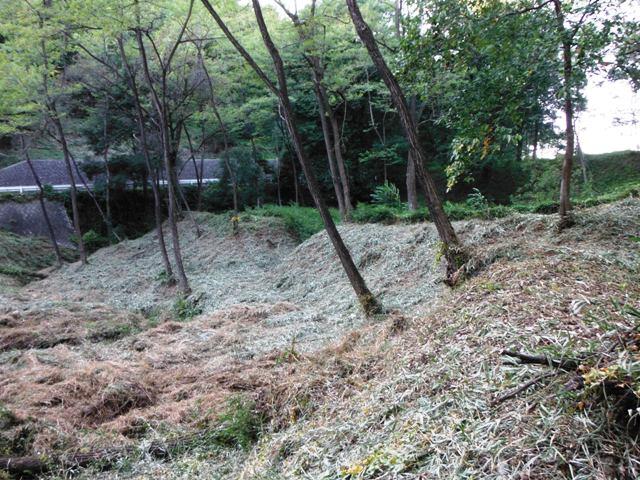 新府城②(韮崎市) (101)