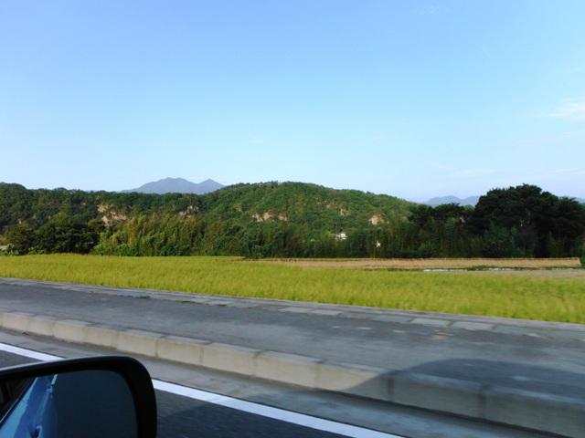 白山城(韮山市) (88)