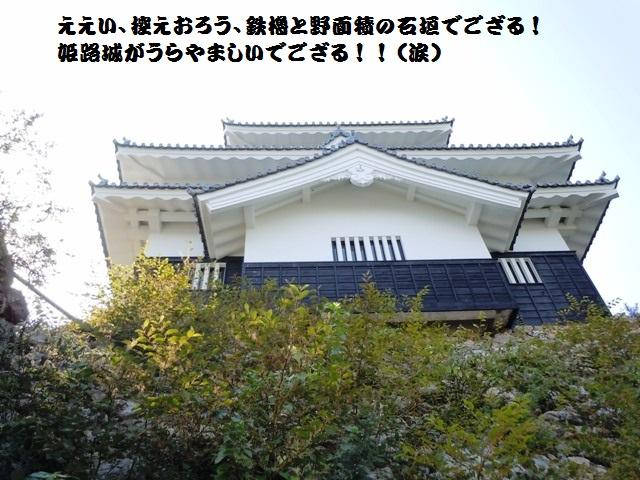 吉田城(三河) (21)