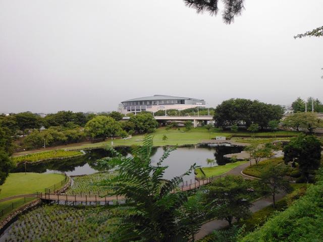 前橋城(群馬県) (2)