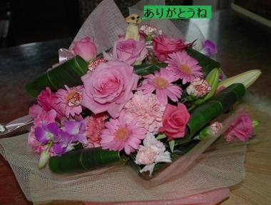 DSC_0103_20140708105117118.jpg