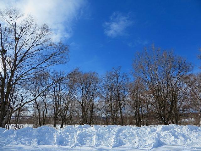 雪景色 035