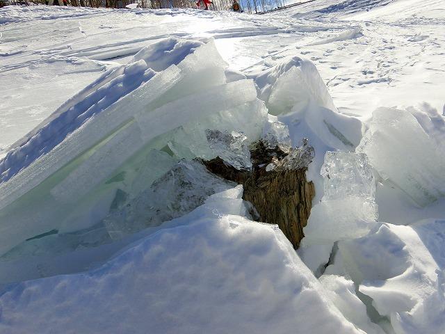 キノコ氷 (5)