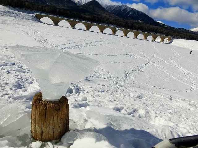 キノコ氷 (3)