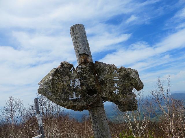 仁頃山の花 046