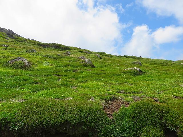 北海岳への道 (3)