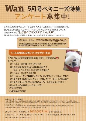 wan_questionnaires1405.jpg