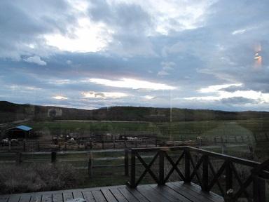 夕暮れの牧場