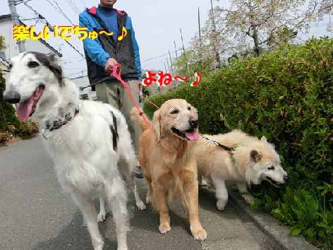 e_20140414193621303.jpg