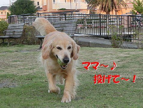 e_20140531223002fae.jpg