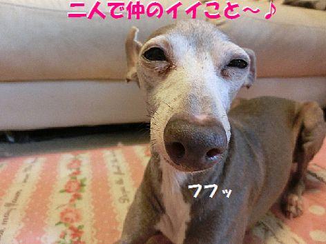 h_20140812013617610.jpg