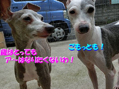 i_20140721095156e41.jpg