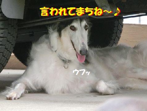 m_20140704194843cef.jpg