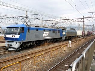 rie8046.jpg