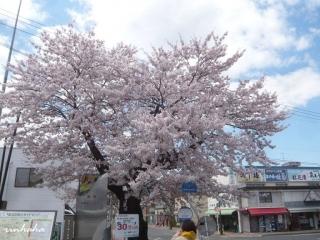 0423yamagataho4_20140424085843d0c.jpg