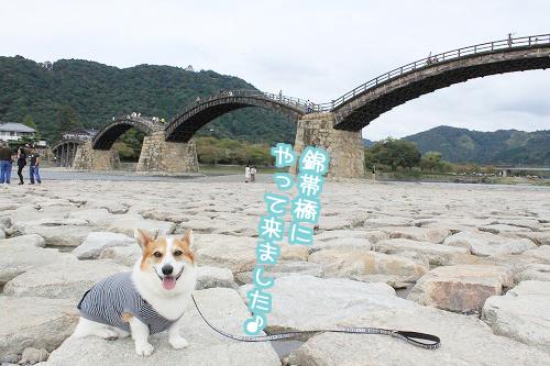 10月錦帯橋