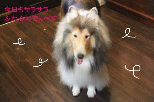 2014-7-23繧翫・縺ケ縺。繧・s_convert_20140802215238