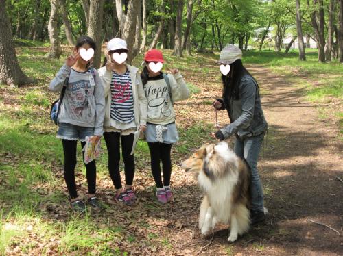 syougakusei_convert_20140424001906.png