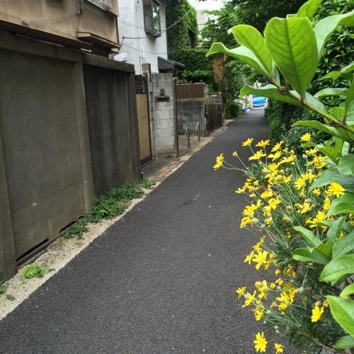 20140505_4.jpg