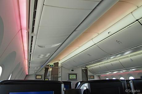 JAL・B787、桜色の客室