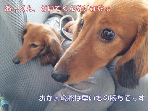 140513-01.jpg