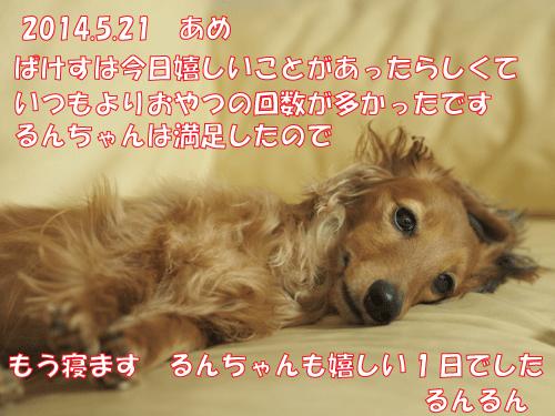 140521-01.jpg