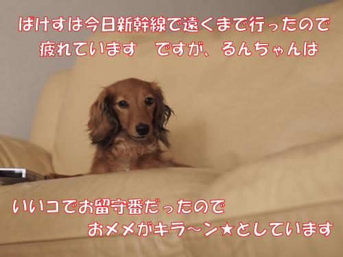 140825-01.jpg