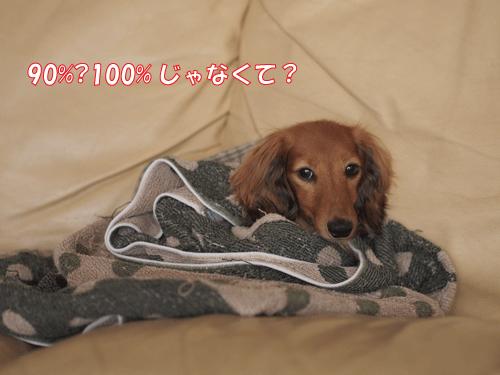 140828-01.jpg